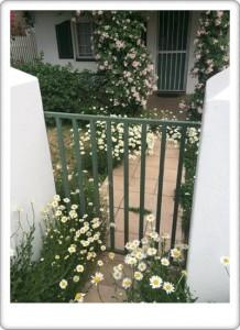 Greendoor Cottage1b detail front