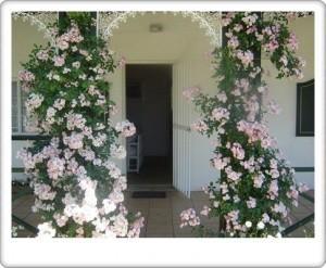 Greendoor Cottage4 front door entrance