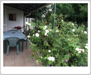 Greendoor Cottage5 back veranda with braai area
